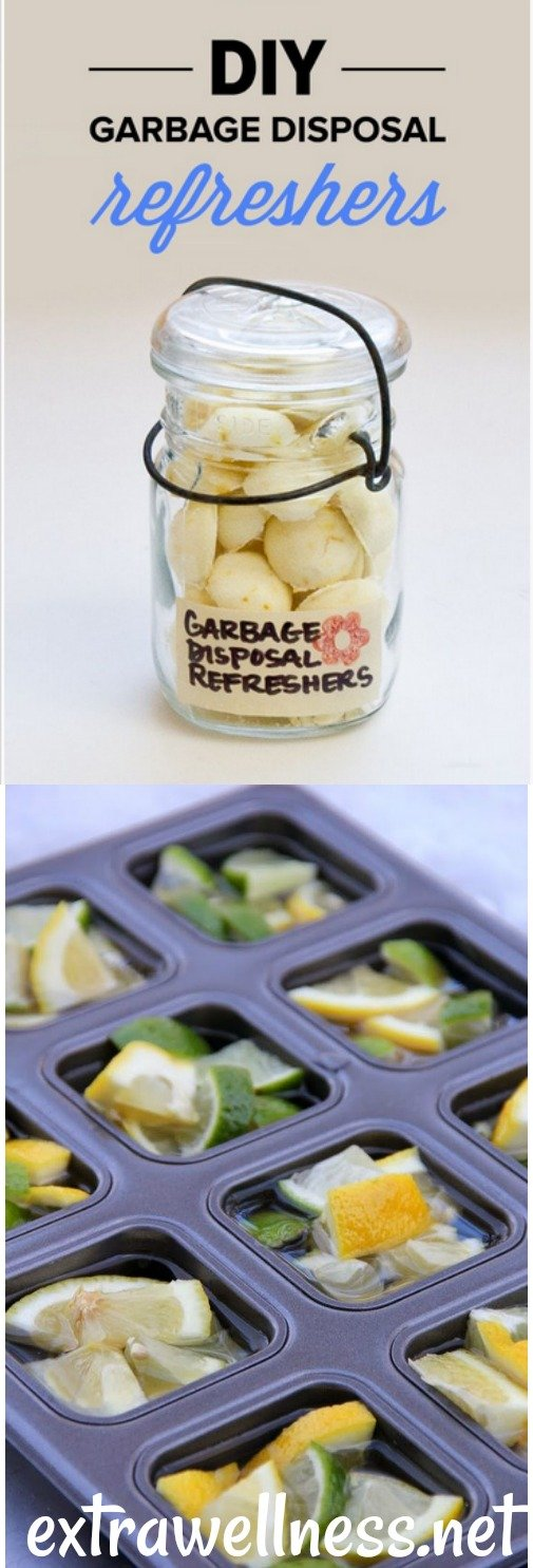If your waste disposal is n't really as fresh (just like mine) as it ought to be, Then this Do It Yourself homemade Garbage Disposal refresher is the best tested and proven solution for it.